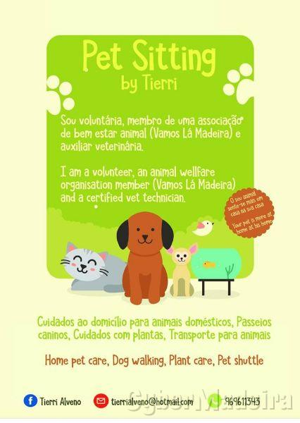 Pet Sitting by Tierri caminho s roque 9020-122 Sé, Centro